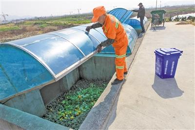 温州推行垃圾分类 力争2020年底实现城镇生活垃圾总量零增长