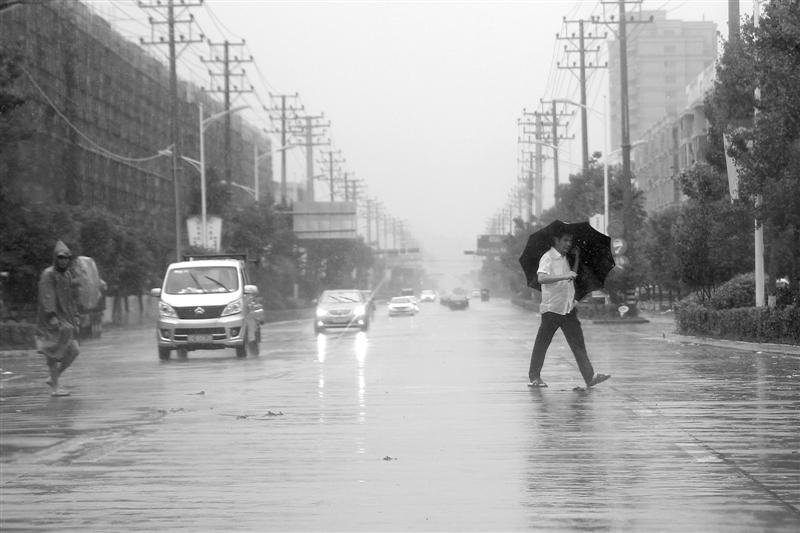 早谋划早行动 此番台风袭来水头未见漫水