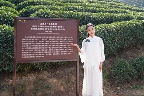 向美而行!这个龙8国际客户端姑娘是2020年中华茶奥会形象代言人